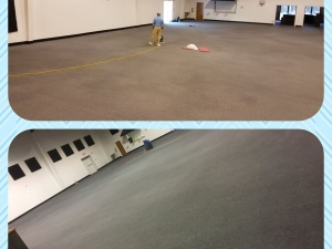 Carpet Dye-Tech - Greenville, NC