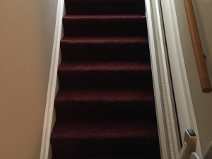 Residential Carpet Dyeing by Carpet Dye-Tech in Atlanta, GA