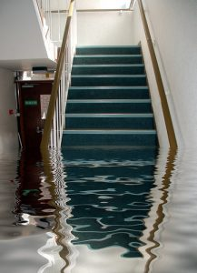 custom carpet cleaning water flood damage